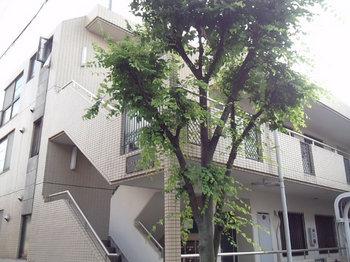荻窪駅から徒歩15分の3SLDKマンションの外観